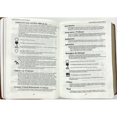 Nova Bíblia Viva - Natureza - (Letra Grande)