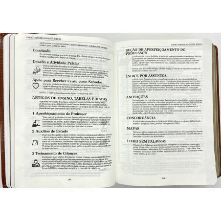 Nova Bíblia Viva - Reino  (Capa Dura - Letra Grande)