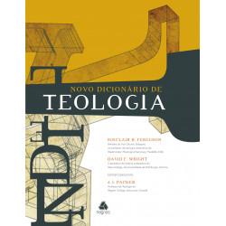 Novo dicionário de teologia...