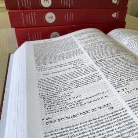 Nova Bíblia Viva - Terra (capa dura)